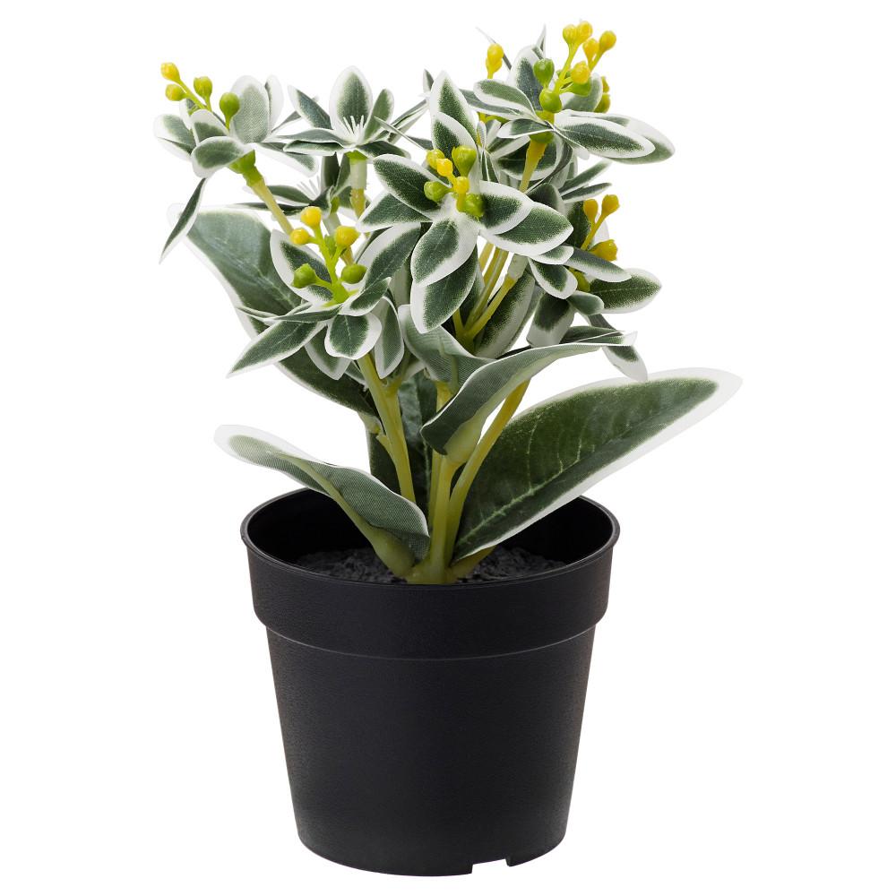 Искусственное растение в горшке ФЕЙКА Молочай разноцветный  фото 1