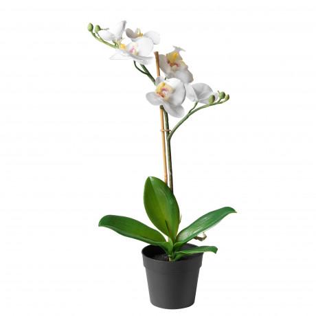 Искусственное растение в горшке ФЕЙКА Орхидея белый фото 3