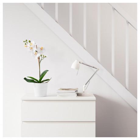Искусственное растение в горшке ФЕЙКА Орхидея белый фото 4