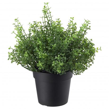 Искусственное растение в горшке ФЕЙКА д/дома/улицы Солейролия фото 3
