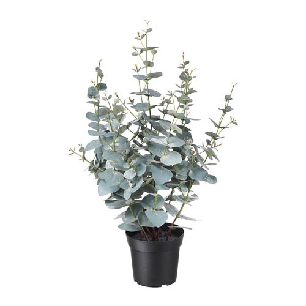 Искусственное растение в горшке ФЕЙКА д/дома/улицы эвкалипт  фото 1