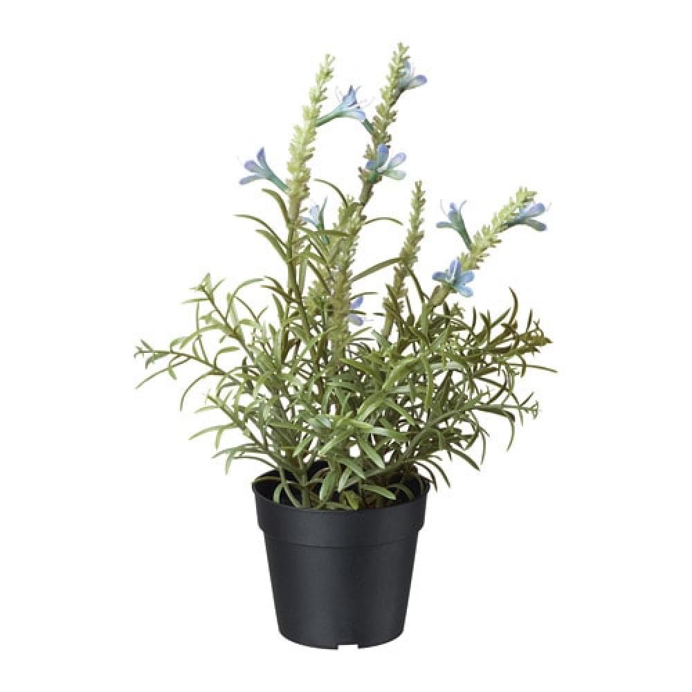 Искусственное растение в горшке ФЕЙКА лаванда синий  фото 1