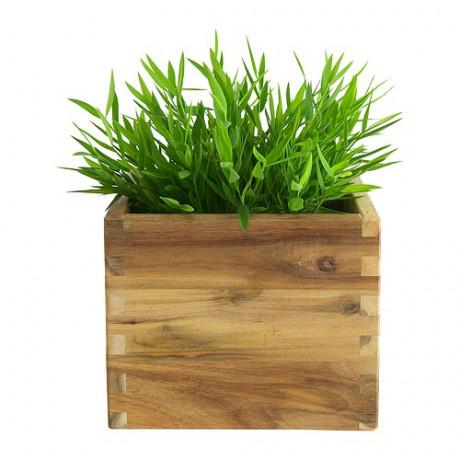 Искусственное растение в горшке ФЕЙКА Комнатный бамбук фото 5