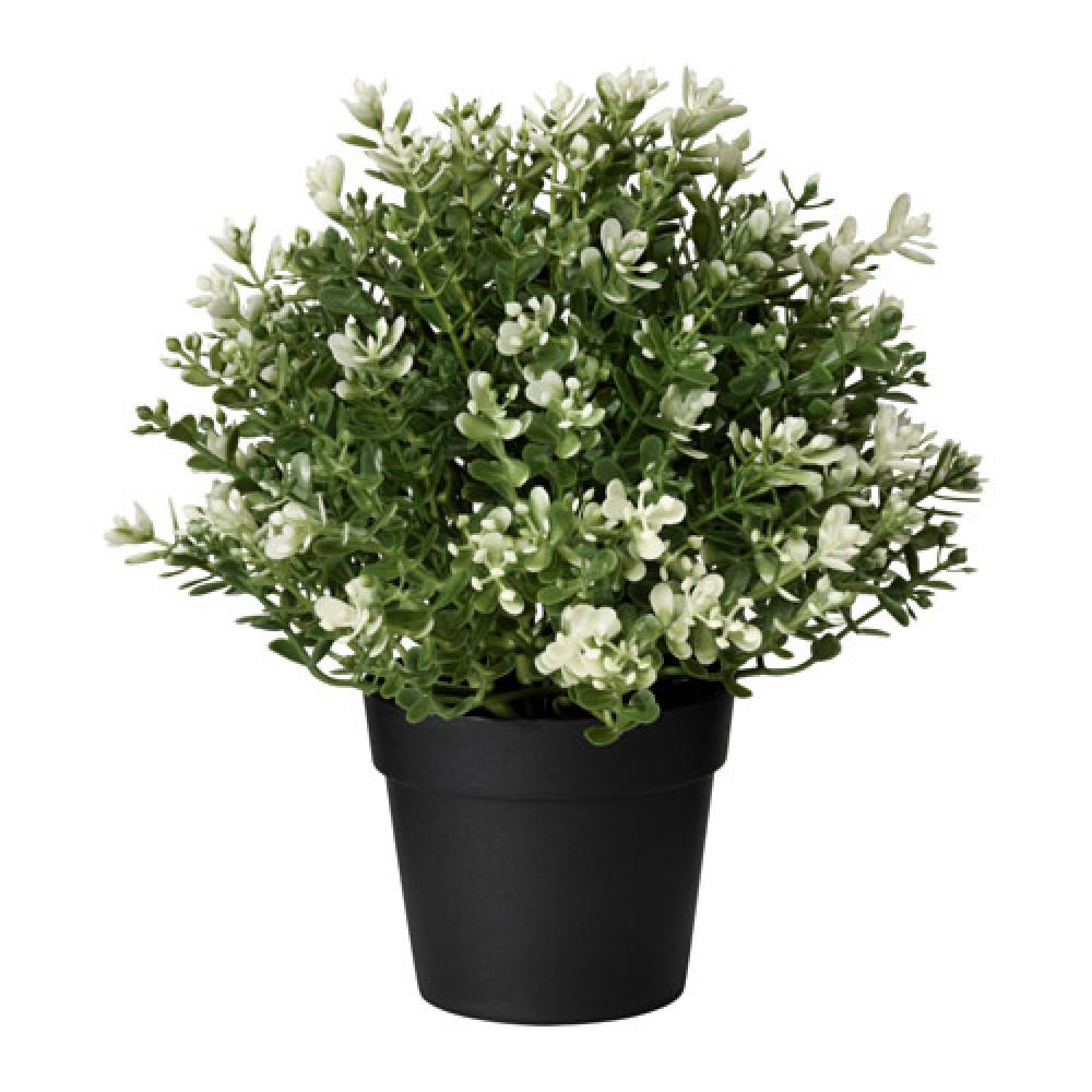 Искусственное растение в горшке ФЕЙКА чабрец  фото 1