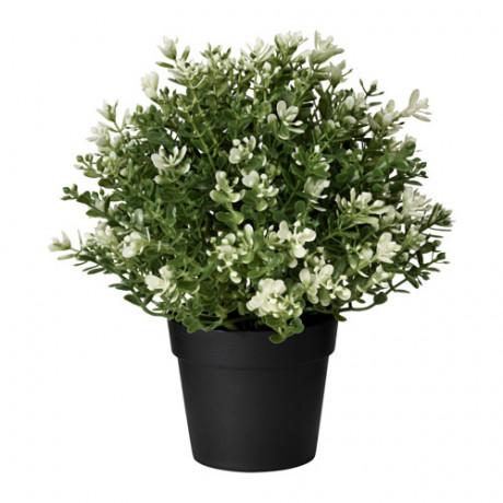 Искусственное растение в горшке ФЕЙКА чабрец фото 3