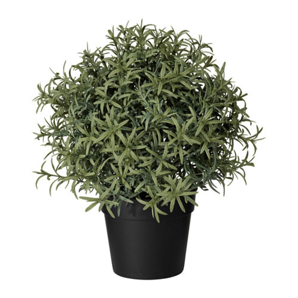 Искусственное растение в горшке ФЕЙКА Розмарин  фото 1
