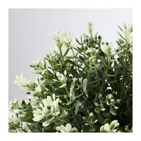 Искусственное растение в горшке ФЕЙКА чабрец фото 4